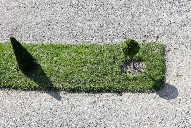Grüner Garten auf einem Kieselbeschaffenheitshintergrund stockfoto