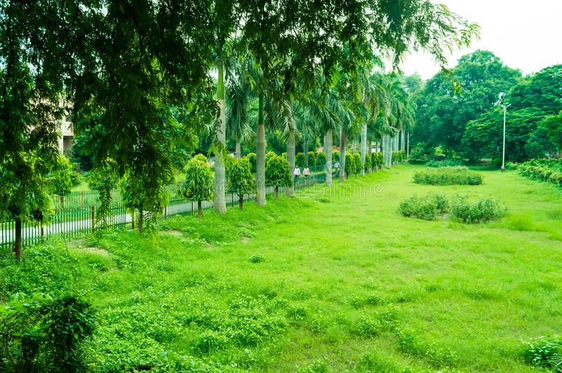 Grüner Garten von Alfred-Park allahabad stockfotos