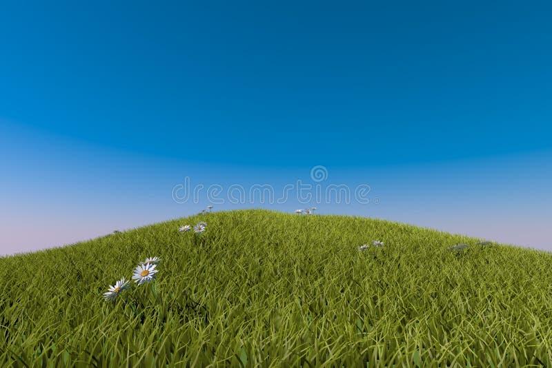 Grüner grasartiger Hügel Blauer Himmel stock abbildung