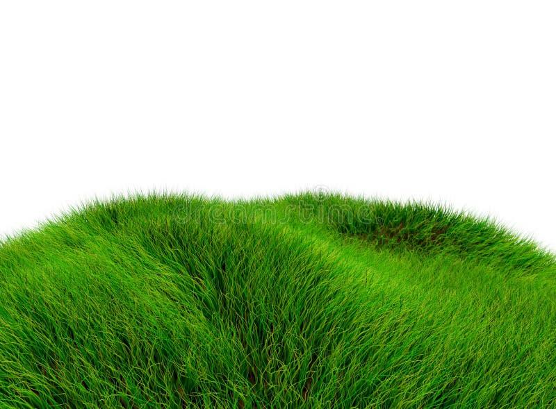 grüner Hügel 3D des Grases - lokalisiert über einem weißen Hintergrund stockfoto