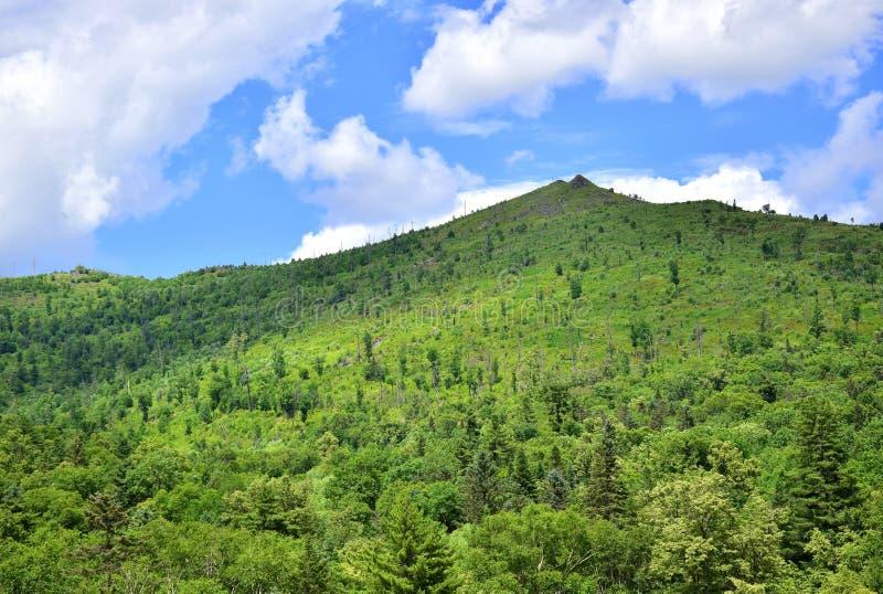 Grüner Hügel und blauer Himmel lizenzfreie stockfotografie
