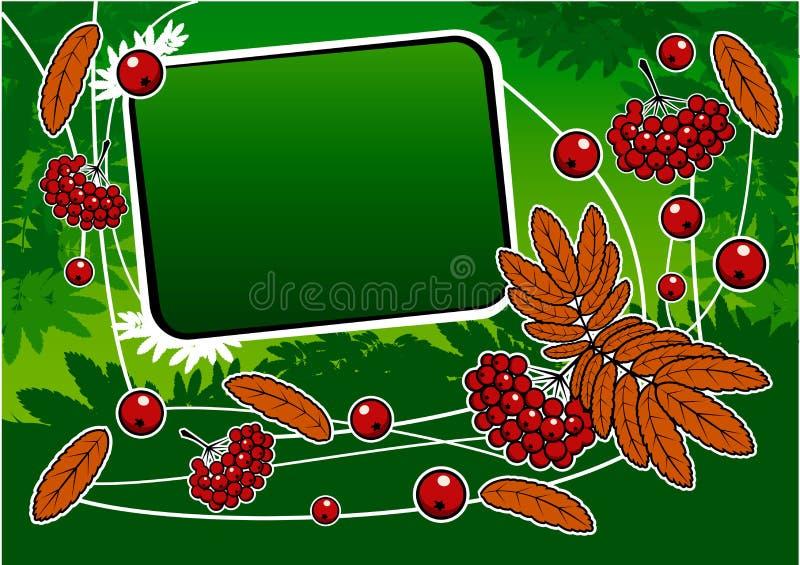 Grüner Hintergrund mit rotem ashberry und Fahne lizenzfreie abbildung