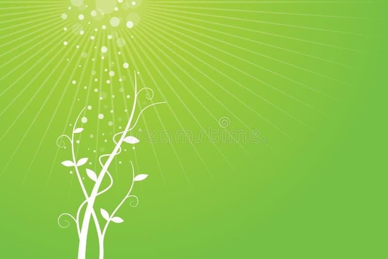 Grüner Hintergrund mit wachsender Anlage lizenzfreie abbildung