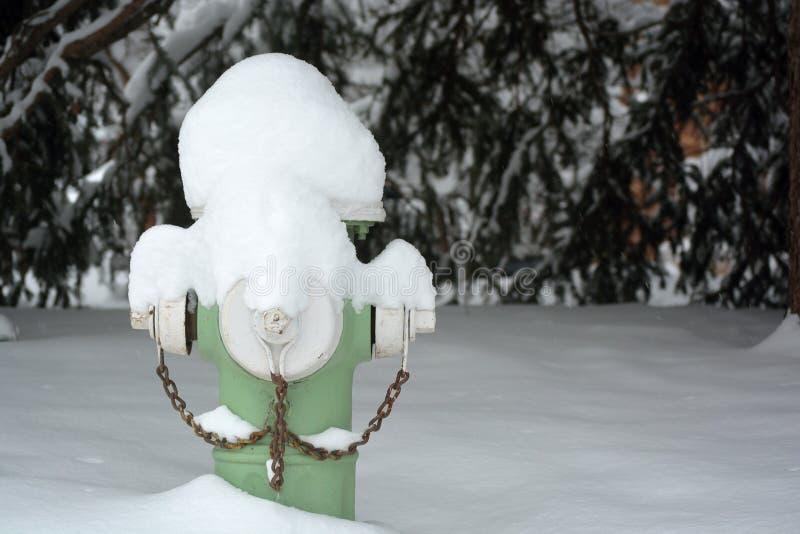 Grüner Hydrant bedeckt im Schnee lizenzfreie stockfotos