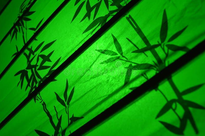Grüner japanischer Bambus verlässt Motiv stockbilder