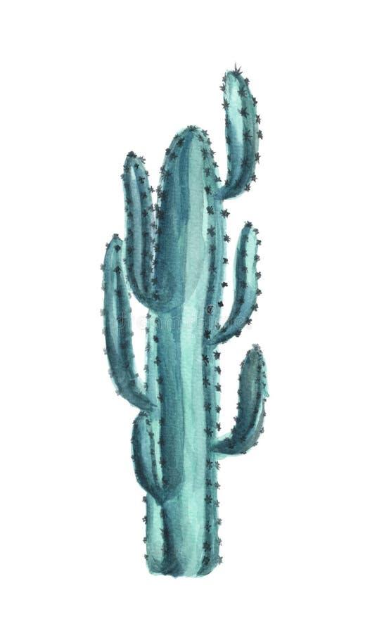 Grüner Kaktus der Blüte, Aquarellillustration stock abbildung