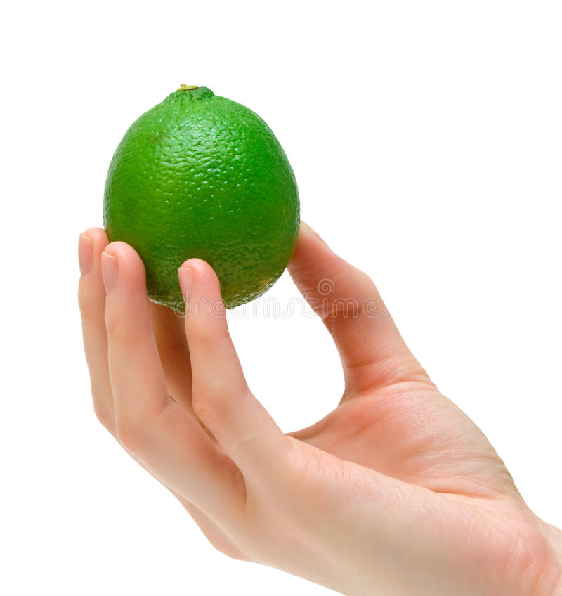 Grüner Kalk lizenzfreies stockbild
