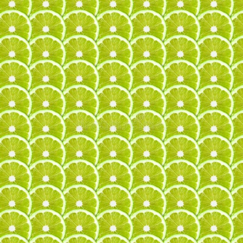 Grüner Kalk schneidet Musterhintergrund lizenzfreies stockbild