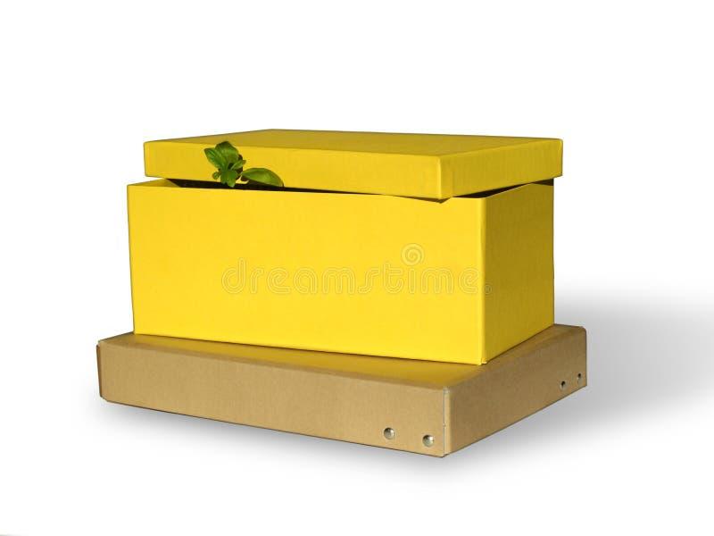 Grüner Kasten lizenzfreie stockbilder