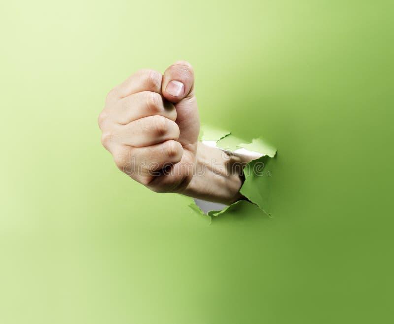 Grüner Locher lizenzfreie stockbilder