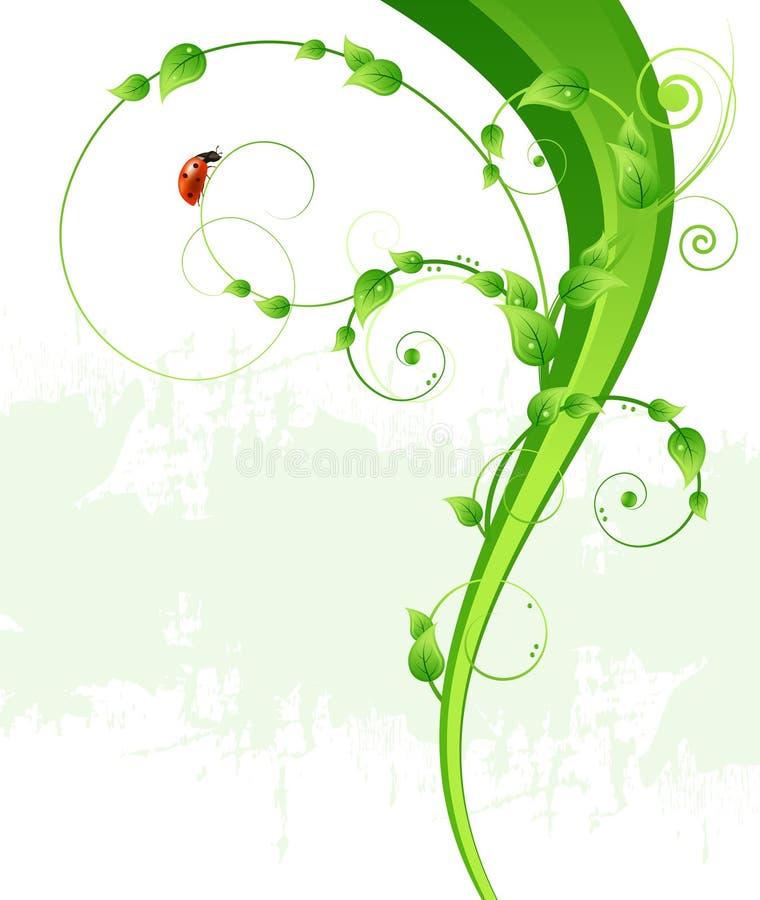 Grüner Musterhintergrund, -blätter und -marienkäfer stock abbildung