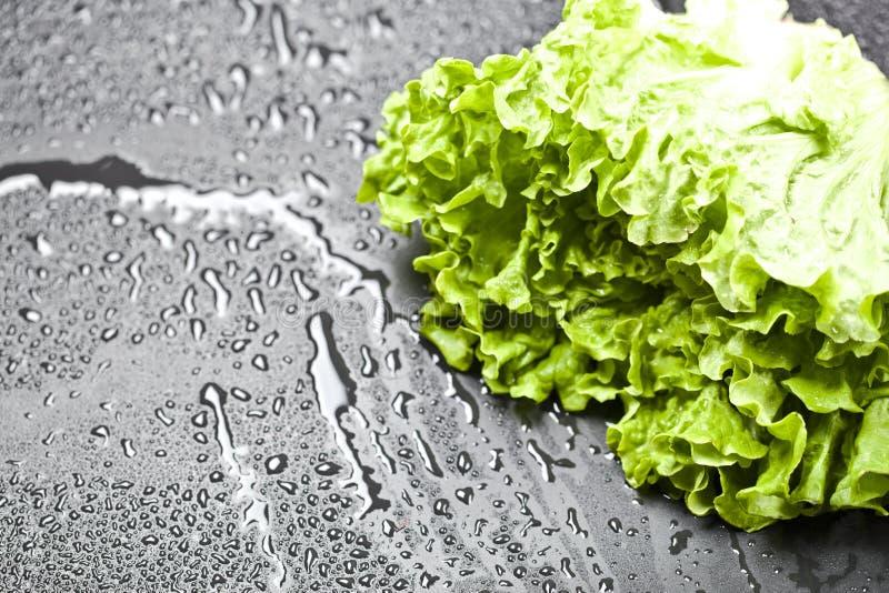 Gr?ner organischer Kopfsalatsalat mit Wasser l?sst Nahaufnahme auf schwarzem Hintergrund fallen lizenzfreies stockbild