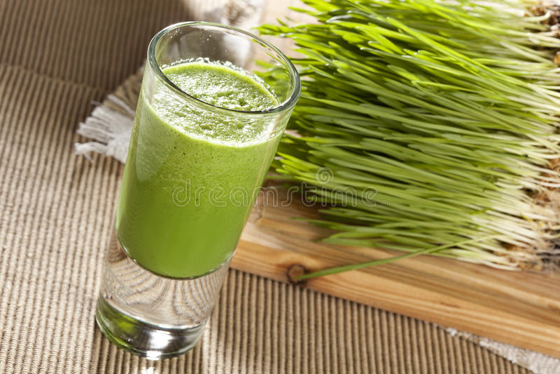 Grüner organischer Weizen-Gras-Schuss lizenzfreies stockfoto