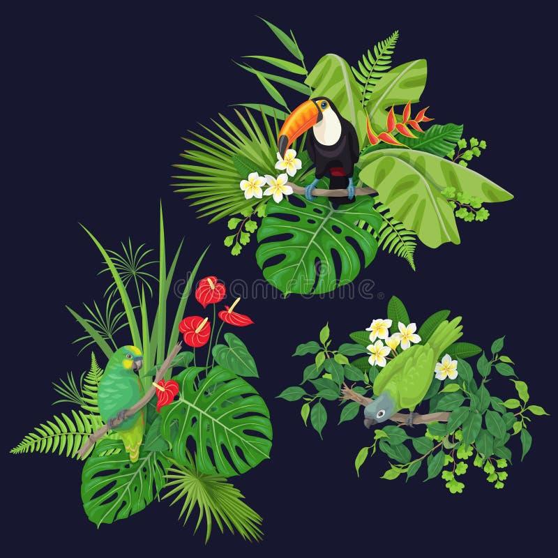 Grüner Papagei und Tukan auf Baumast stock abbildung