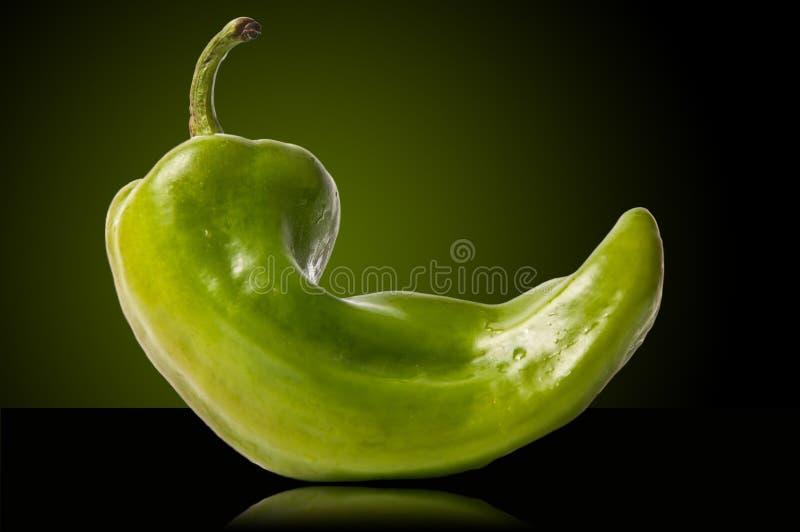 Grüner Paprika lizenzfreie stockbilder