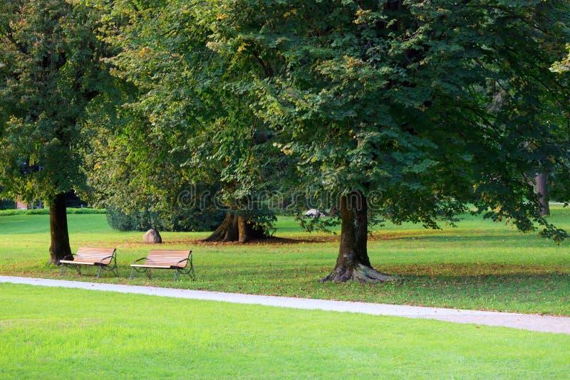 Grüner Park mit iwo Bänke stockfoto