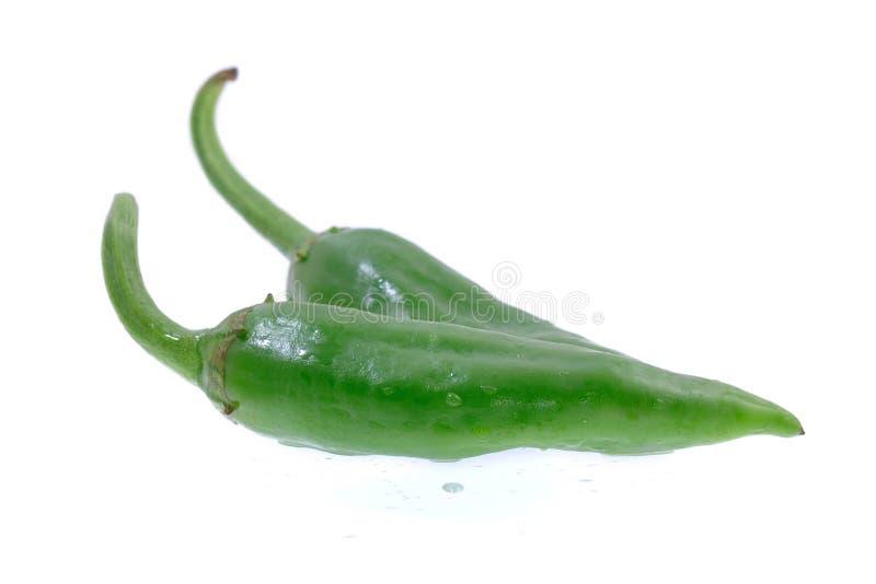 Grüner Pfeffer auf einem Weiß stockbilder
