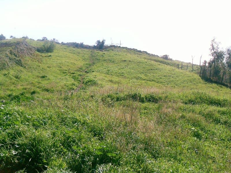Grüner Rasen auf dem Berg Faito in Italien lizenzfreie stockbilder