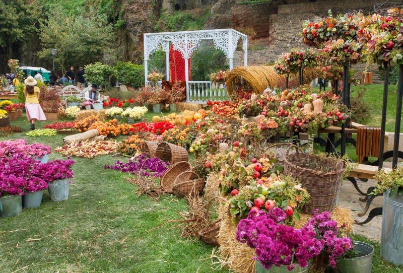 Grüner Rasen mit Ernte von Äpfeln und von Blumen am Herbststadtfestival stockfotografie