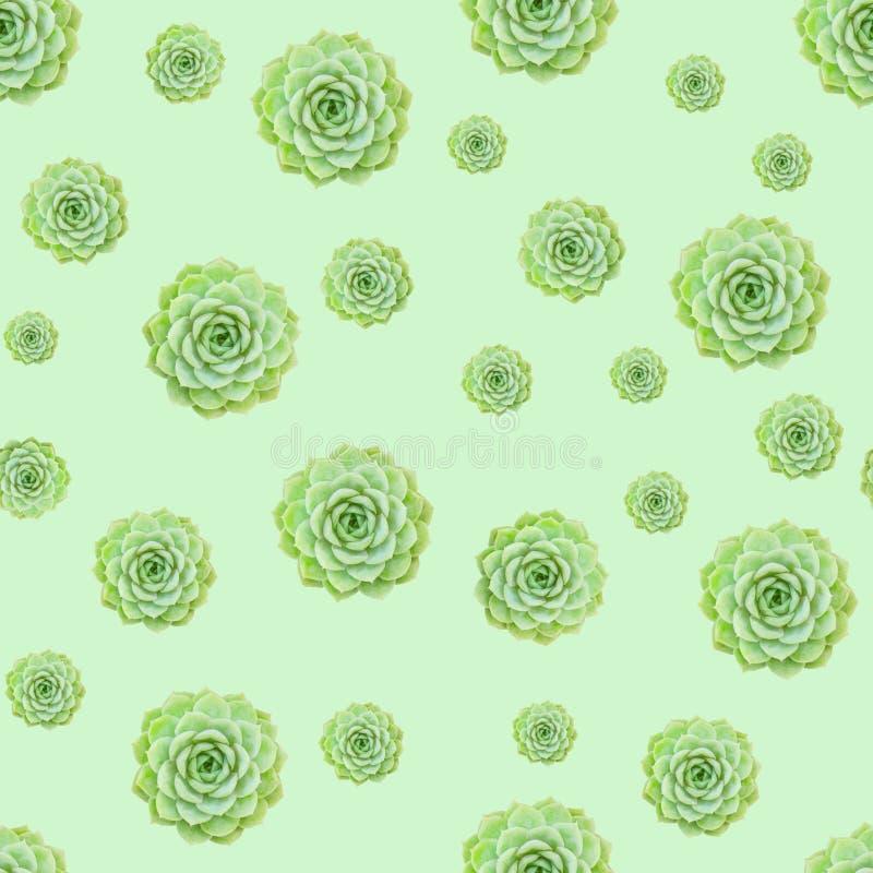 Grüner saftiger Betriebsmuster-Hintergrund lizenzfreies stockbild