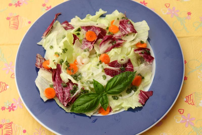 Grüner Salat _1 stockbild