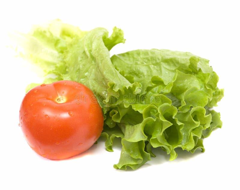 Grüner Salat mit roter Tomate lizenzfreie stockbilder