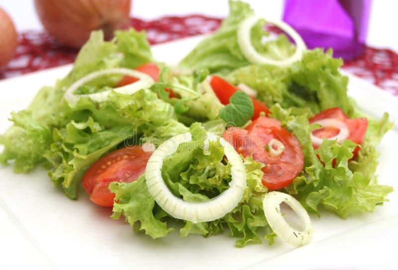 Grüner Salat mit Tomaten lizenzfreie stockfotos