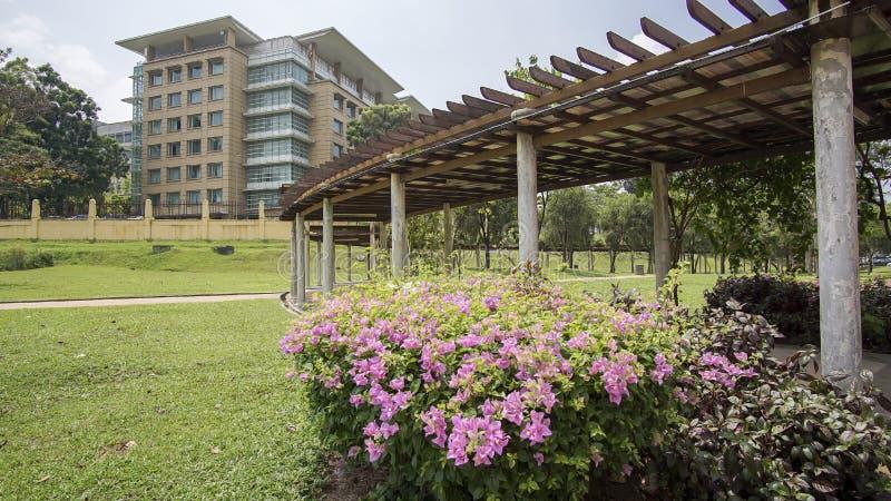 Grüner schöner Garten und Blumen lizenzfreie stockfotografie