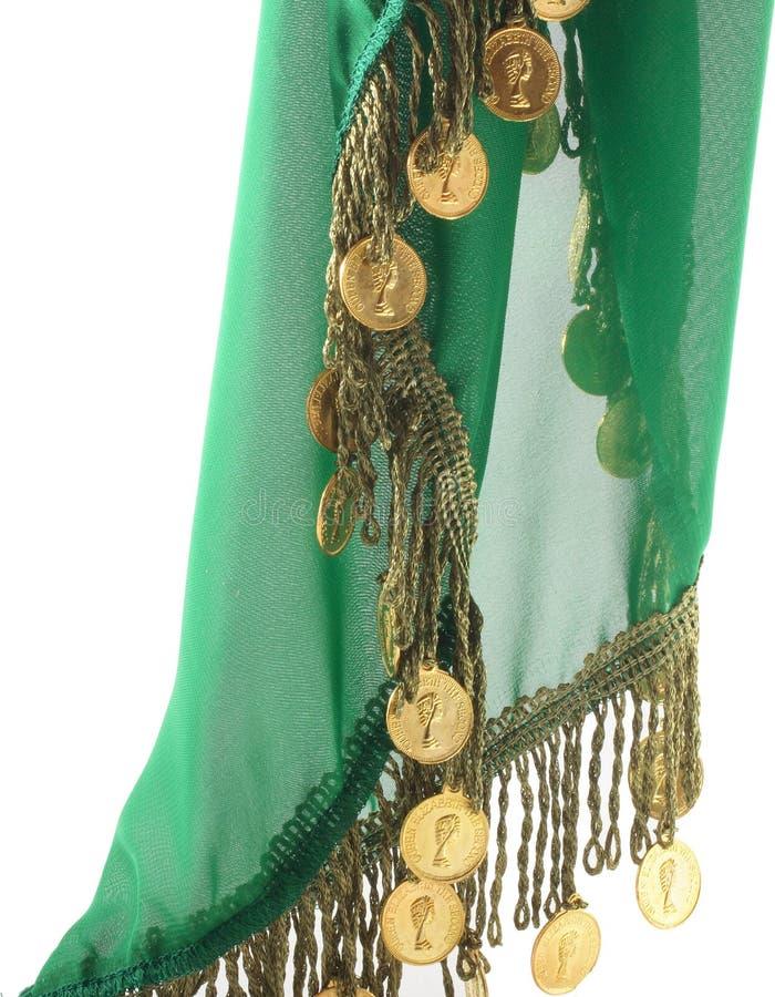 Grüner Schal verziert mit Münzen stockbild