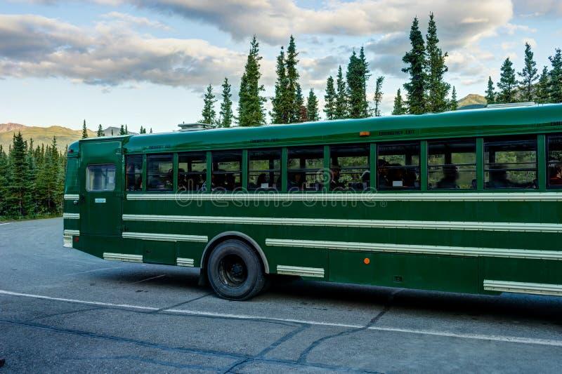 Grüner Schulbus, der für Parkerforschung in Denali-Staatsangehörigem verlässt stockfotografie