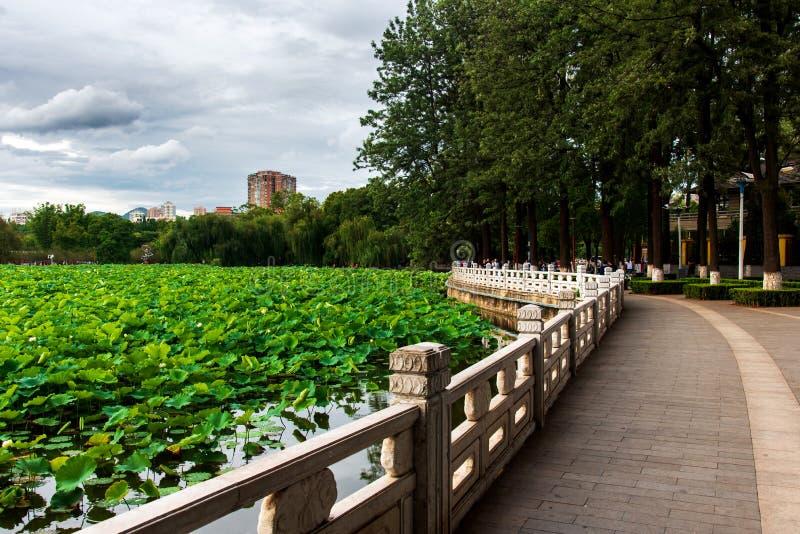 Grüner See in Kunming, Hauptstadt der chinesischen Provinz Yunnan lizenzfreies stockbild