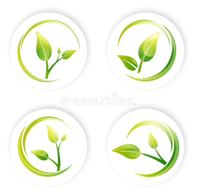Grüner Sprösslings-Blatt-Entwurfs-Satz Stockfoto