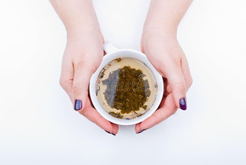 Grüner Tee stockfotos