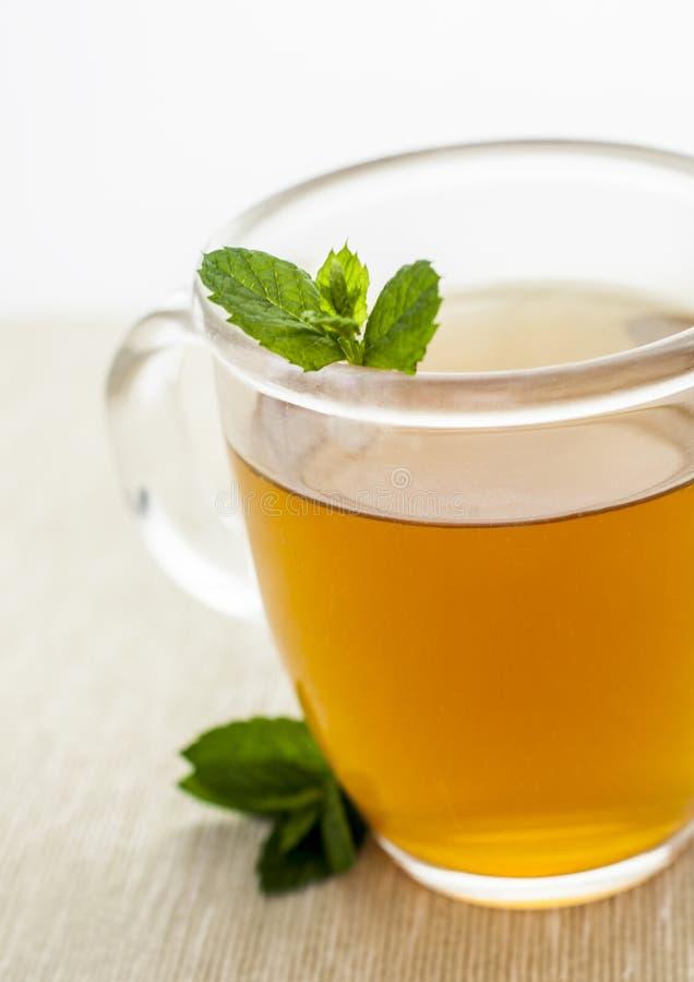 Grüner Tee der Pfefferminz stockbilder