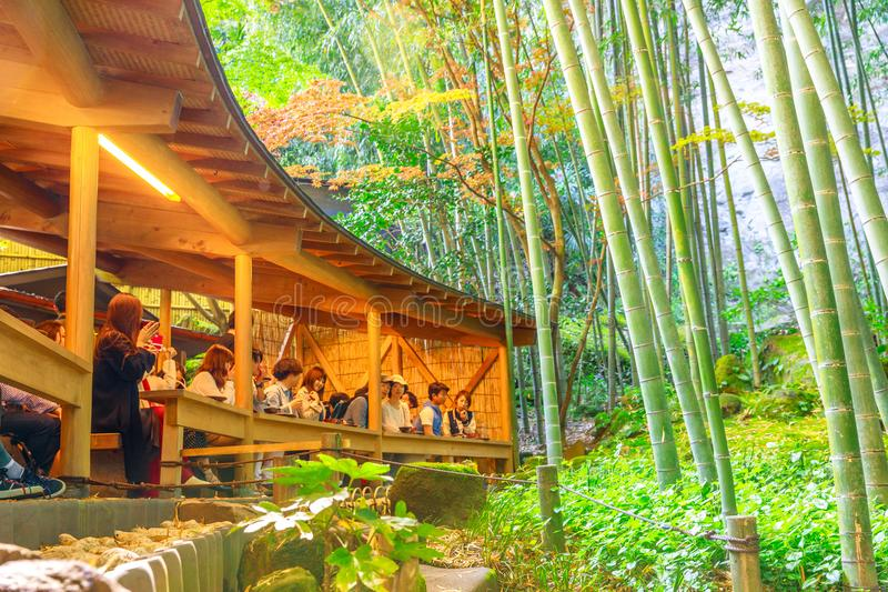Grüner Tee an Hokokuji-Tempel stockfoto