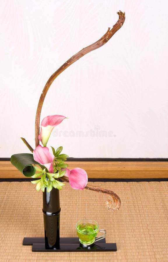 Grüner Tee und ikebana stockfoto