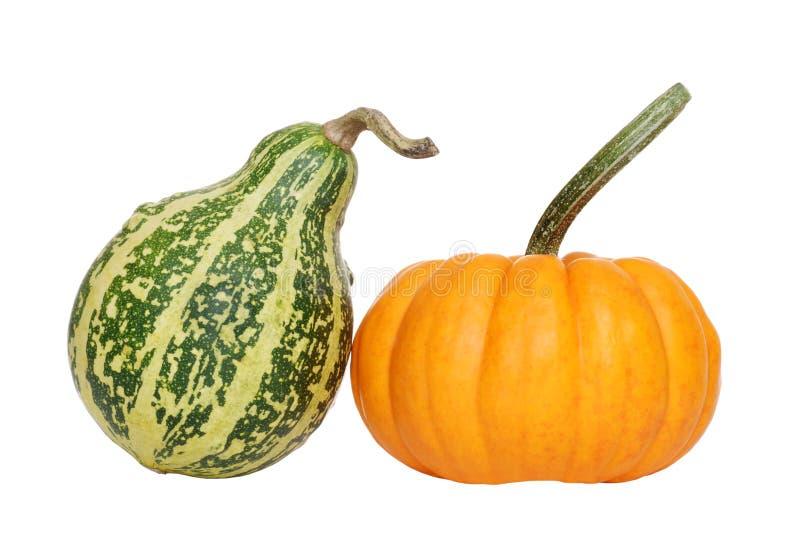 Grüner und orange Kürbis lizenzfreies stockfoto