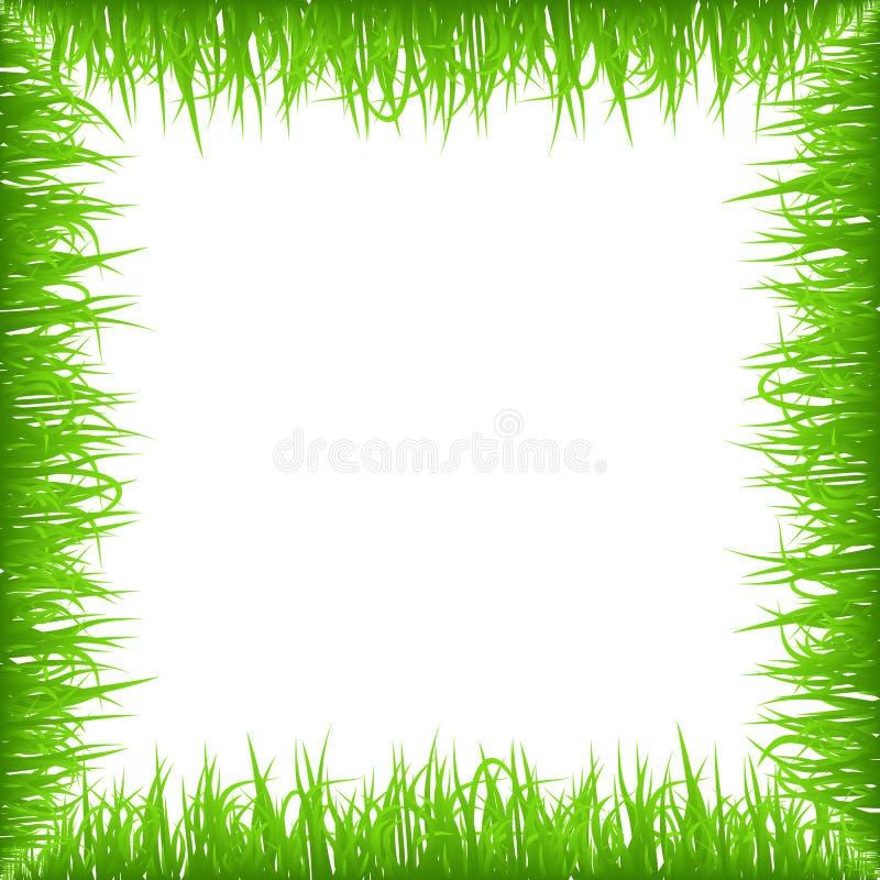 Grüner Vorfrühlingsgrasrahmen lokalisiert auf weißem Hintergrund Realistische eco Naturgrenze lizenzfreie abbildung