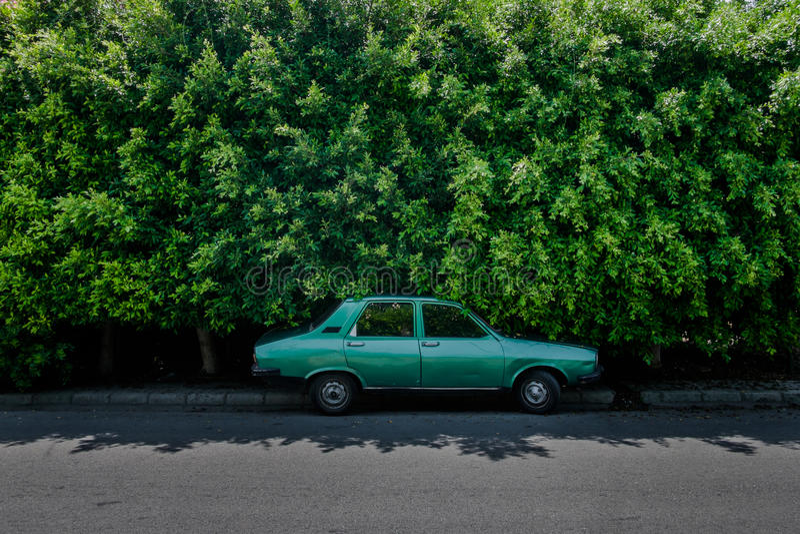 Grünes altes Auto vor grüner Hecke lizenzfreies stockfoto