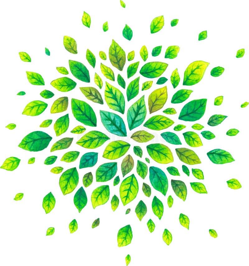 Grünes Aquarellsommerblatt-Vektorspritzen lokalisiert auf Weiß lizenzfreie abbildung