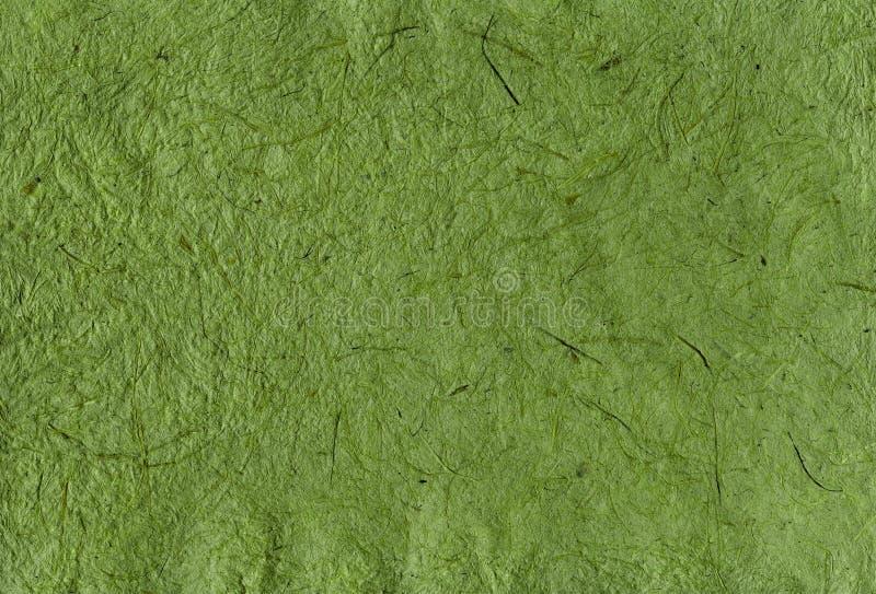 Grünes Büttenpapier mit Beschaffenheit stockfotografie