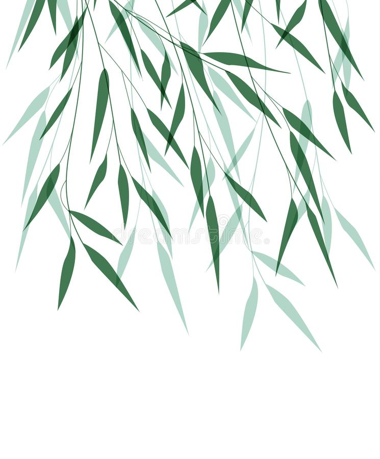 Grünes Bambusblatt vektor abbildung