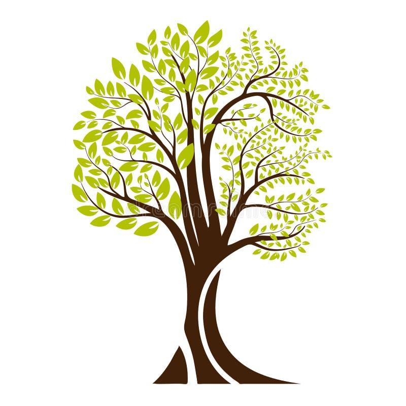 Grünes Baumschattenbild Getrennt auf weißem Hintergrund Vektor vektor abbildung