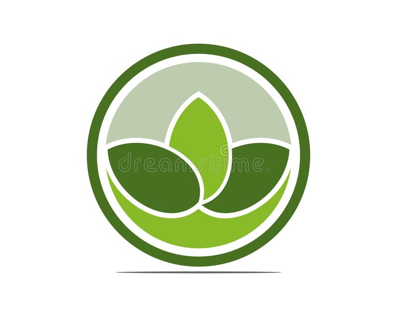 Grünes Blatt und Yoga lizenzfreie stockbilder