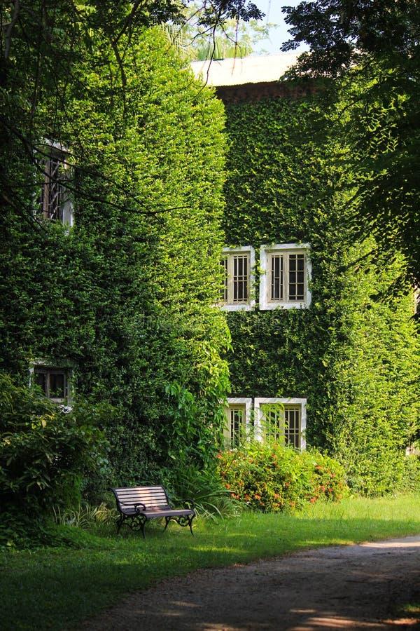 Grünes Buiding lizenzfreie stockfotografie