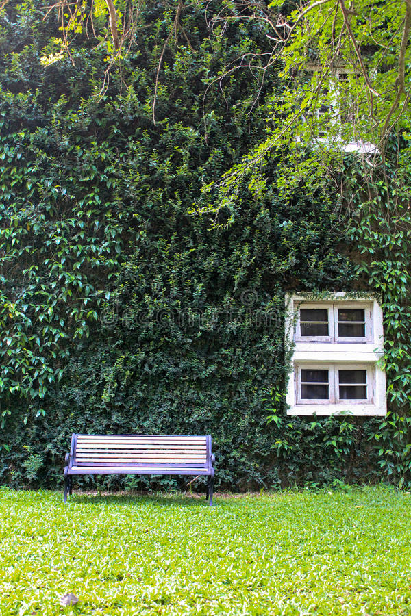 Grünes Buiding lizenzfreie stockfotos
