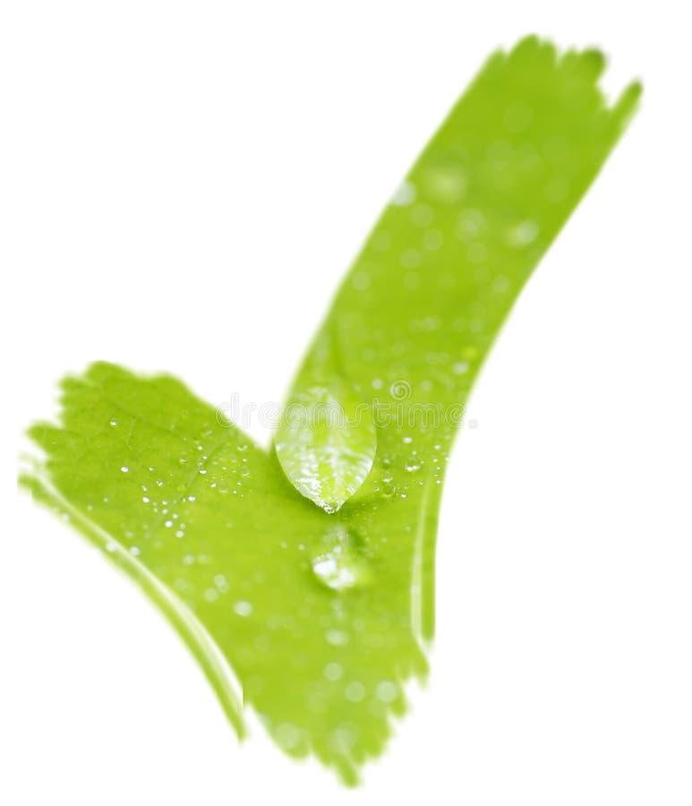 Grünes Checkmarkierungshäckchen stockfoto