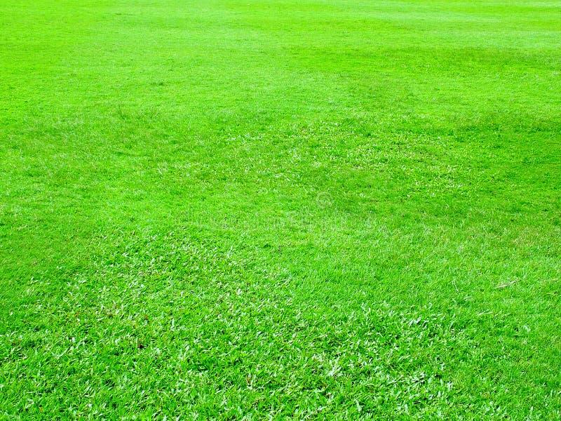 Download Grünes Feld stockbild. Bild von hintergrund, nave, fußball - 33147