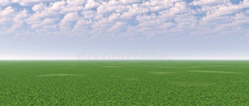 Grünes Feld lizenzfreie abbildung