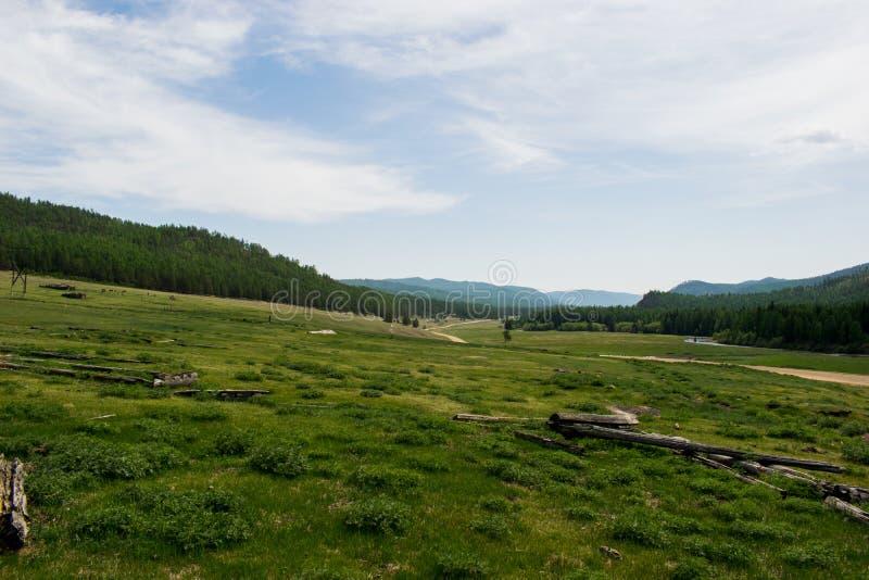 Grünes Feld auf einem Hintergrund von Bergen und von blauem Himmel am Sommertag grünes Feld in den Abstandshügeln stockfotos